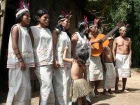 Trilha da Reserva Indígena de Silveira
